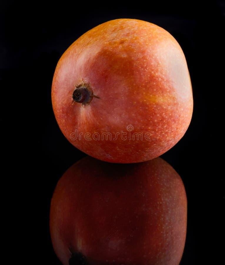 Exotische Frucht der Mango lokalisiert auf schwarzem Hintergrund stockbild