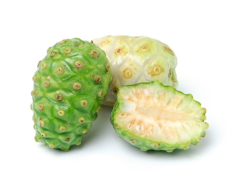 Exotische Frucht - Noni auf Weiß lizenzfreie stockbilder
