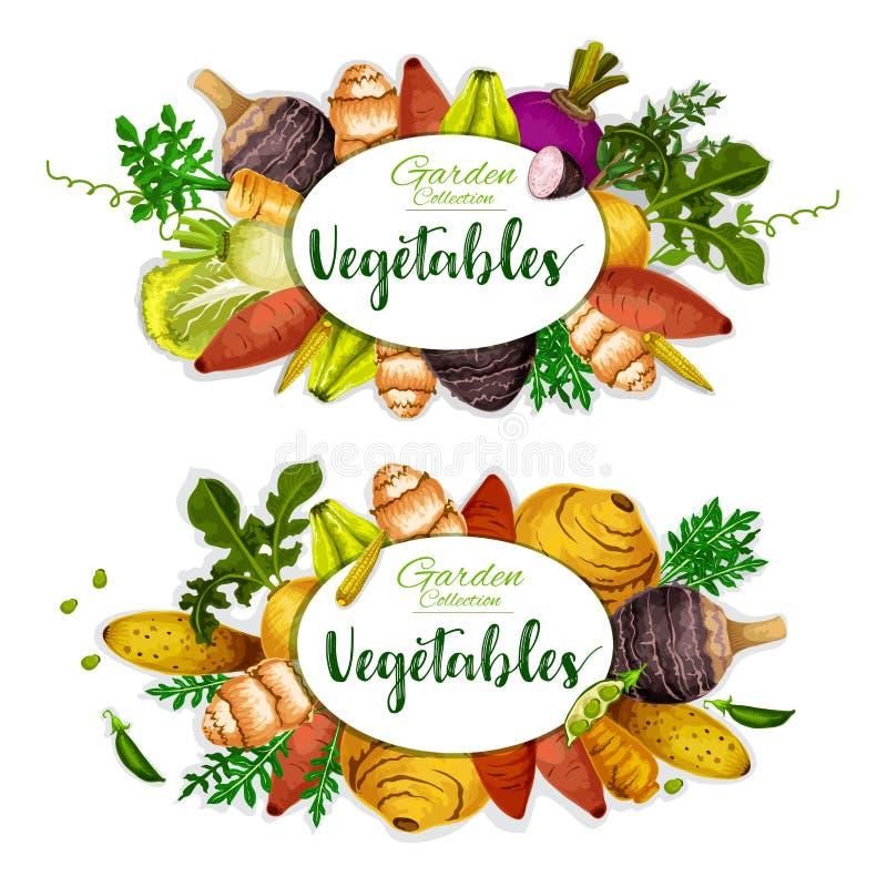 Exotische groenten met hoofdwortel, kruiden en bonen royalty-vrije illustratie