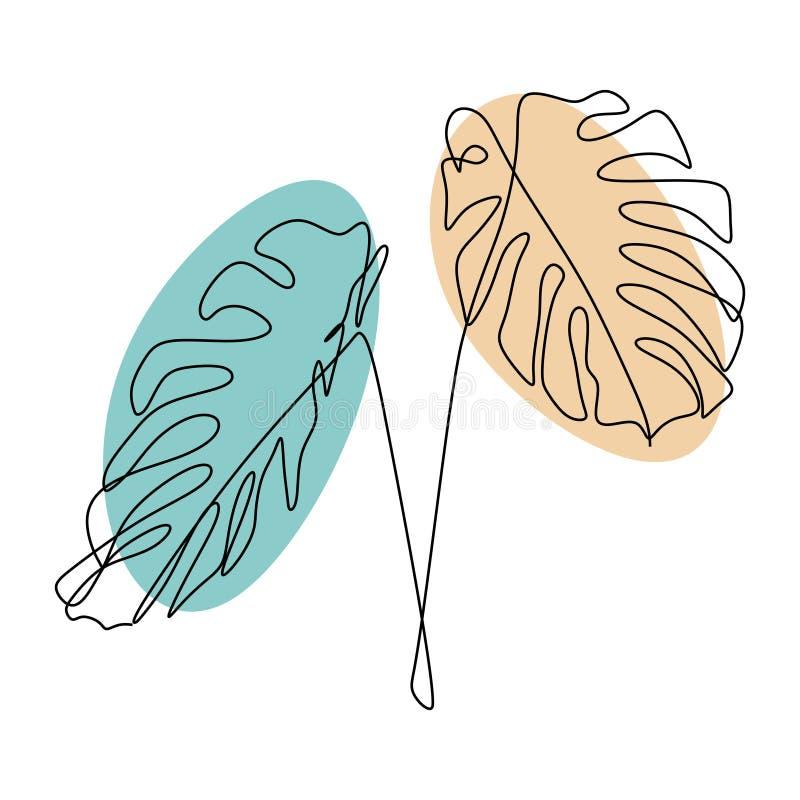 Exotische monstera ononderbroken hand van het de zomer de tropische blad van de lijntekening die op wit minimalistisch ontwerp wo royalty-vrije illustratie
