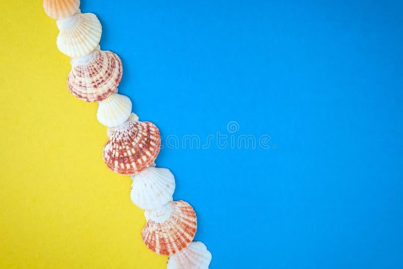 Exotische Muscheln und Starfishsammlung stockfoto