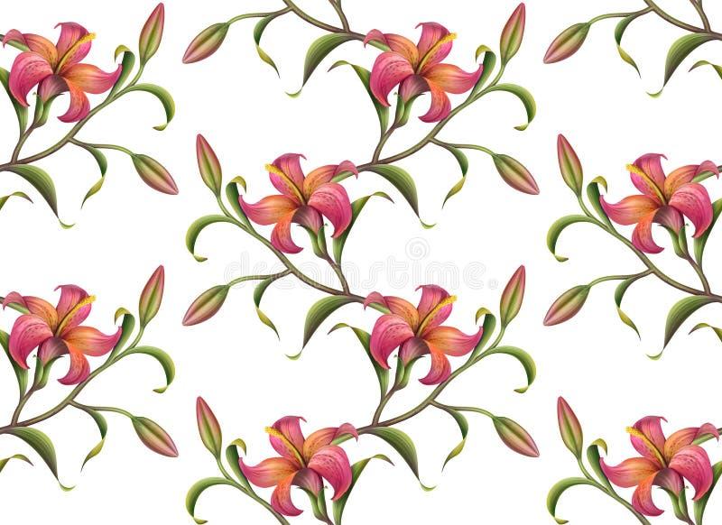Nahtloser Blumenmusterhintergrund lizenzfreie abbildung