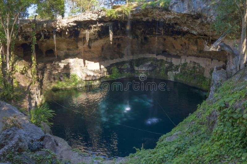 Exotische natuurlijke pool Cenote Zaci in Yucatan stock afbeeldingen