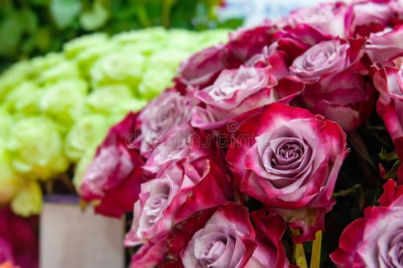 Exotische Rosen der rosa modernen Auslesevielzahl im Blumenstrauß als Geschenk Hintergrund Selektiver Fokus lizenzfreie stockfotos
