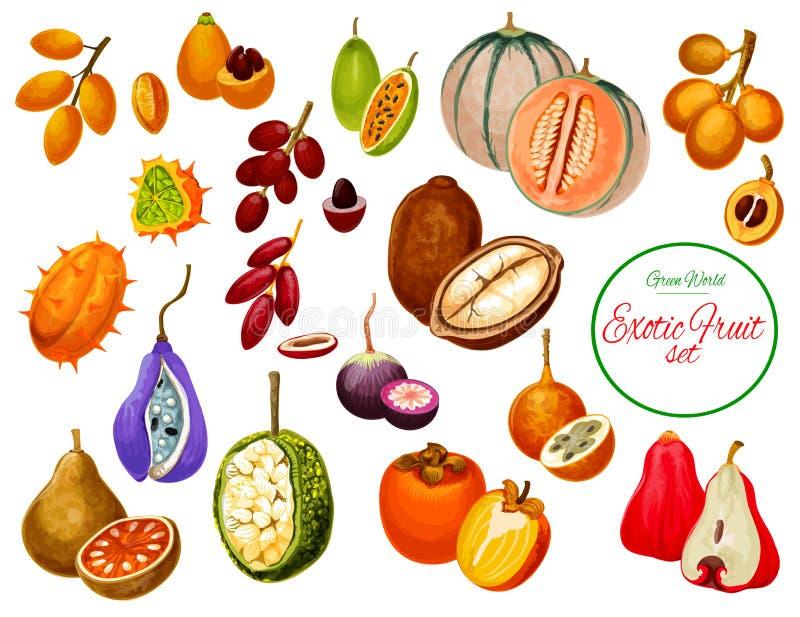 Exotische tropische Frucht- und Beerenikonen vektor abbildung