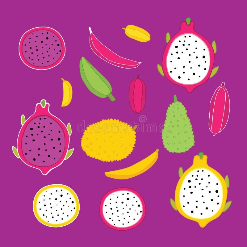 Exotische tropische vruchten inzameling op fuchsiakleurig kleurenachtergrond royalty-vrije illustratie