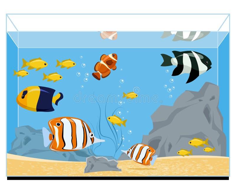 Exotische vissen in aquarium royalty-vrije illustratie