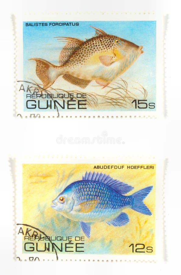 Exotische vissen op zegels royalty-vrije stock afbeeldingen