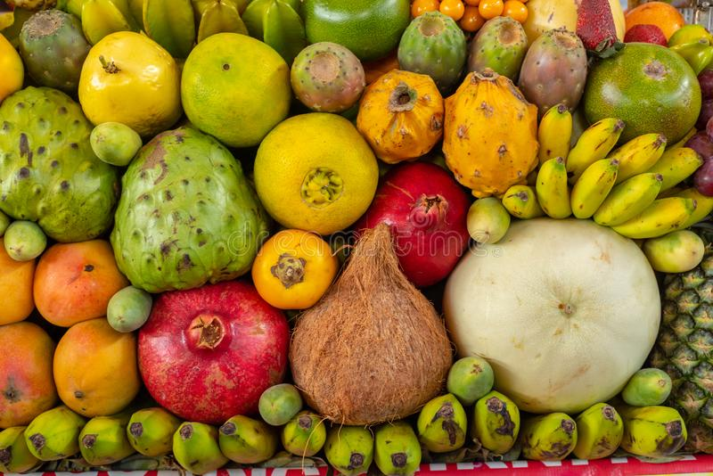 Exotische vruchten vertoning royalty-vrije stock foto