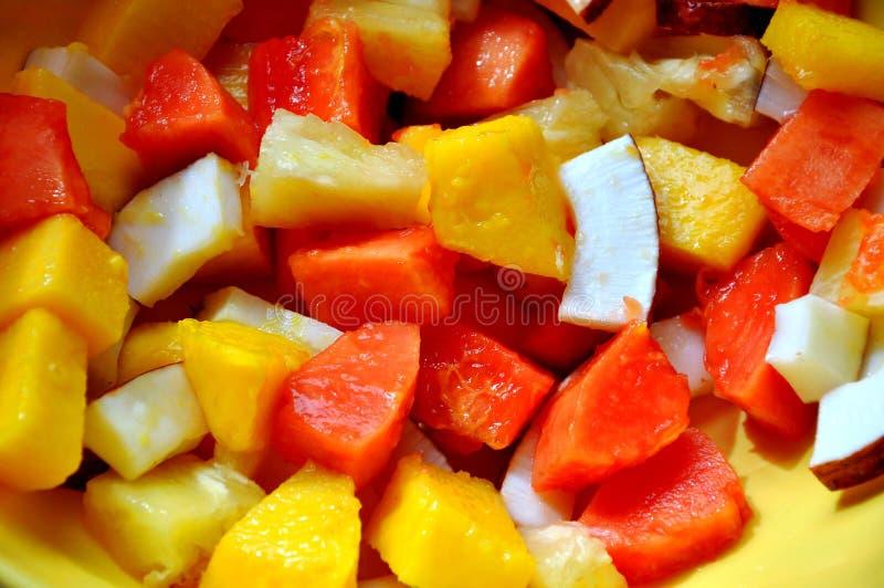 Exotischer Fruchtsalat mit Kokosnuss, Papaya und Mangofrucht lizenzfreie stockfotos