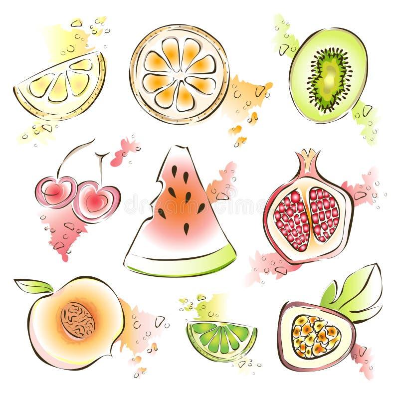 Exotischer Fruchtsatz Vektorillustration, auf Weiß Wassermelone, Granatapfel, Kiwi, Zitrone und andere saftige Früchte lizenzfreie abbildung