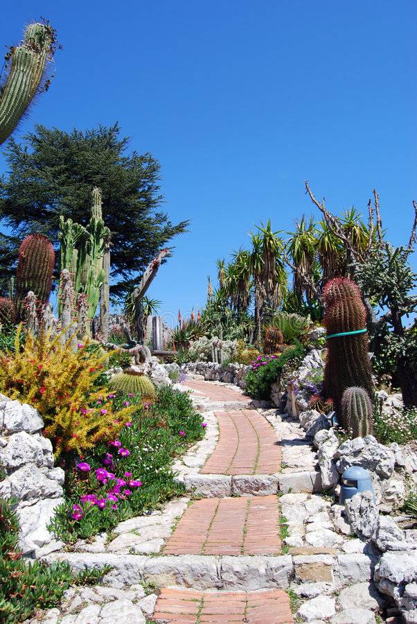 Exotischer Garten stockfoto