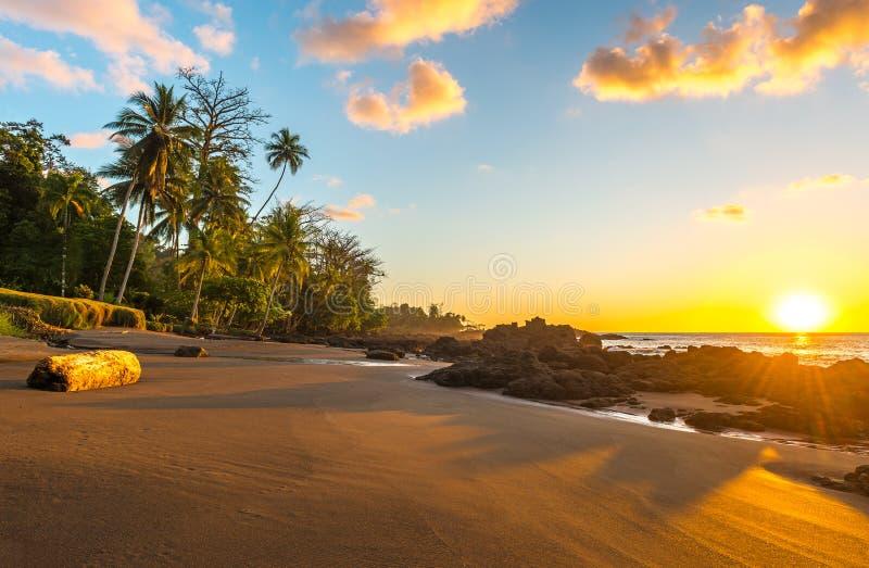 Exotischer Sonnenuntergang in Nationalpark Corcovado, Costa Rica stockfotografie