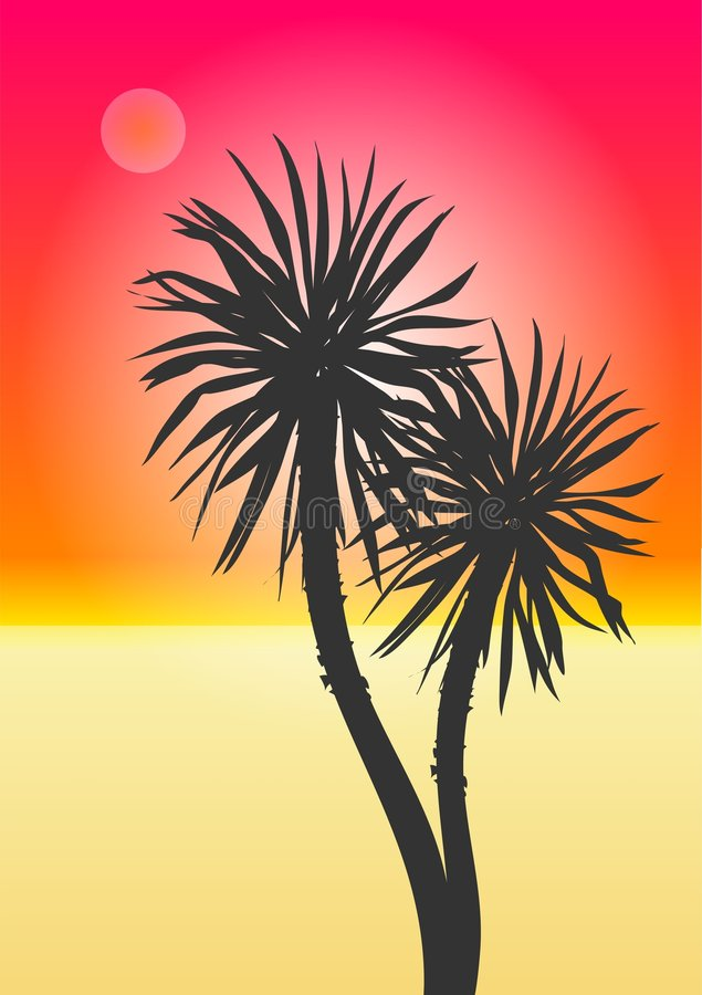 Exotischer Strand lizenzfreie abbildung