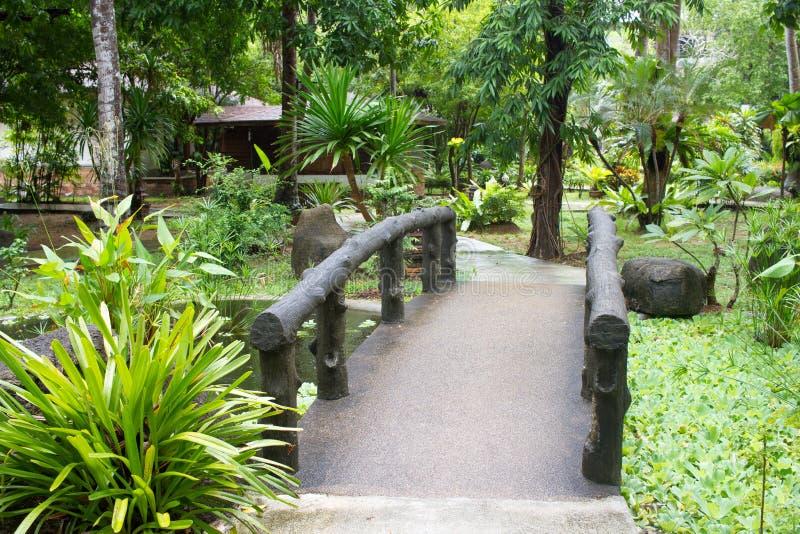 Exotischer thailändischer Garten mit Pflanzen und Bäumen asiatischen Stil stockbilder