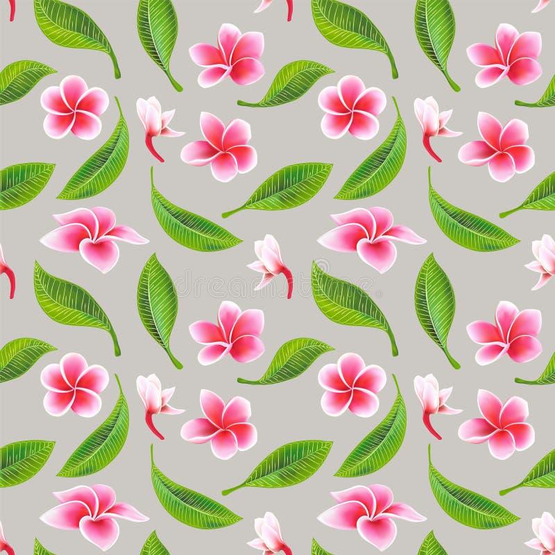 Exotischer tropischer Blumenhibiscus Frangipani und nahtloses Muster der grünen Blätter stock abbildung