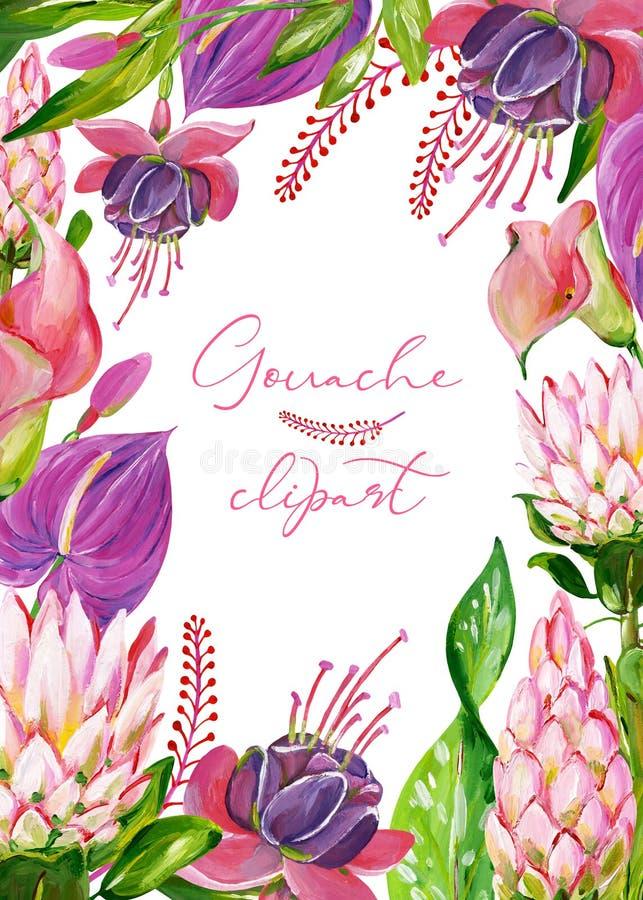 Exotisk blom- ram för gouache med den protea-, calla-, anthurium- och fuchsiablomman royaltyfri illustrationer