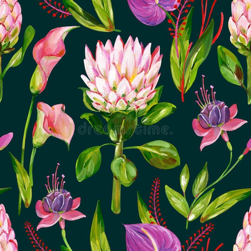 Exotisk blom- sömlös modell för gouache med den protea-, calla-, anthurium- och fuchsiablomman på en mörk bakgrund vektor illustrationer