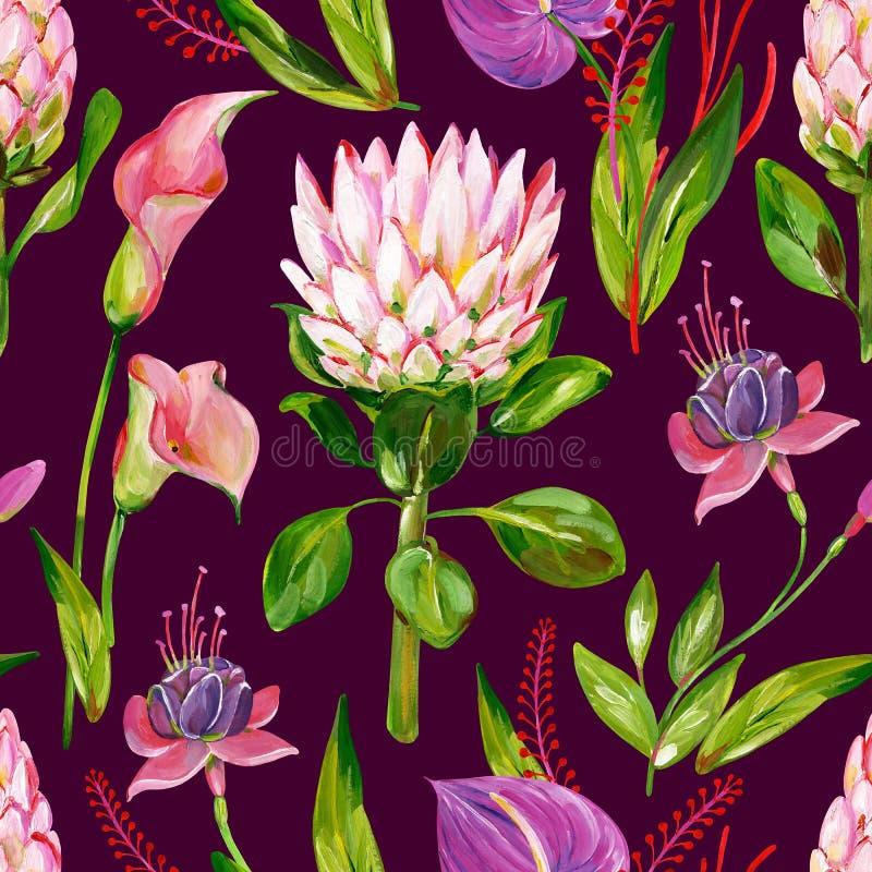 Exotisk blom- sömlös modell för gouache med den protea-, calla-, anthurium- och fuchsiablomman på en mörk rosa bakgrund vektor illustrationer