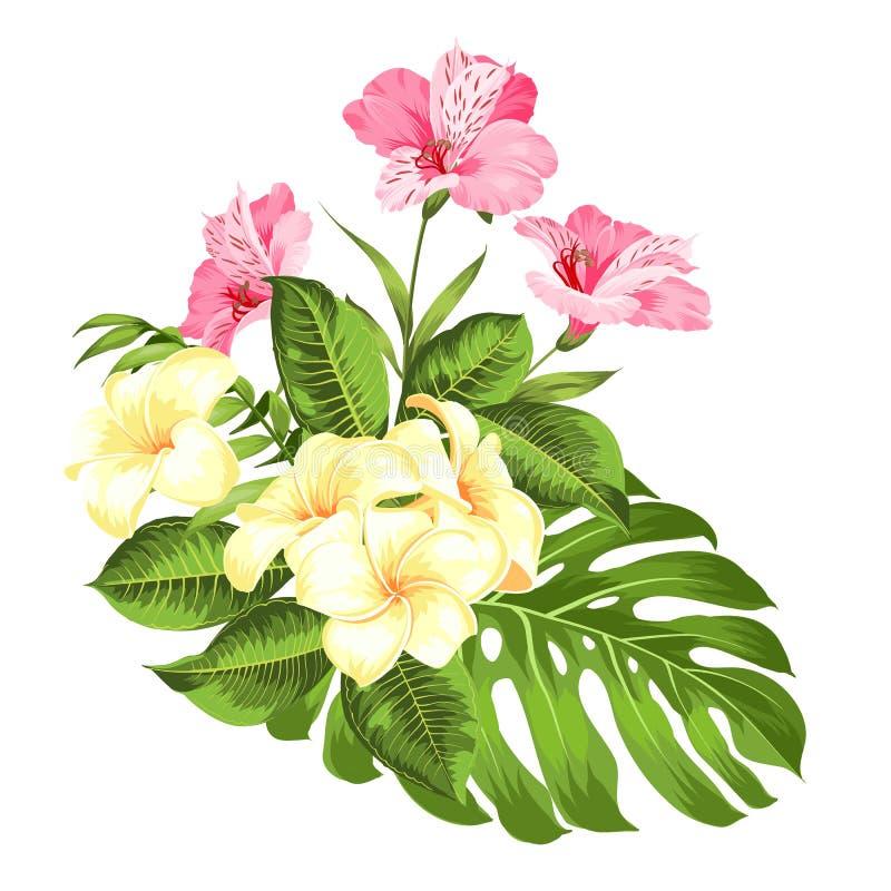 Exotisk blommabukett av färgknoppgirlanden Etikett med plumeriablommor Bukett av aromatiska tropiska blommor vektor illustrationer