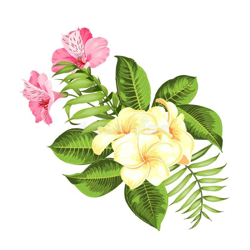 Exotisk blommabukett av färgknoppgirlanden Etikett med plumeriablommor Bukett av aromatiska tropiska blommor stock illustrationer