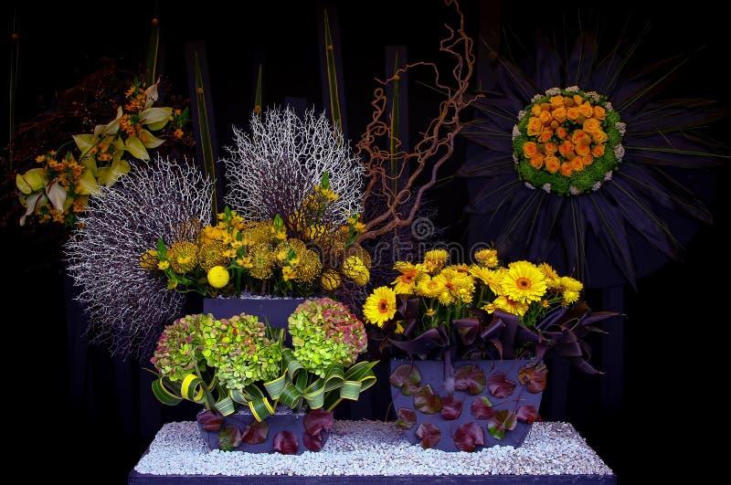 Exotisk blommaordning mot mörk bakgrund royaltyfri bild