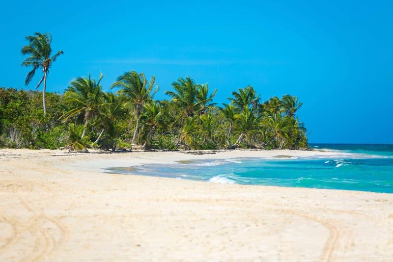 Exotisk carribean kust av den Puerto Rico Flamenco stranden royaltyfria bilder