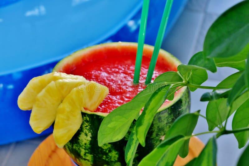 Exotisk coctail med vattenmelon och ananas med tubules royaltyfri fotografi