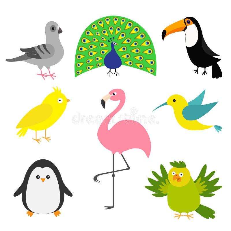 Exotisk fågeluppsättning Colibri kanariefågel, papegoja, duva, duva, flamingo, tukan, pingvin, påfågel Gullig symbol för tecknad  stock illustrationer