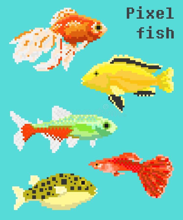 Exotisk fisk för PIXEL vektor illustrationer
