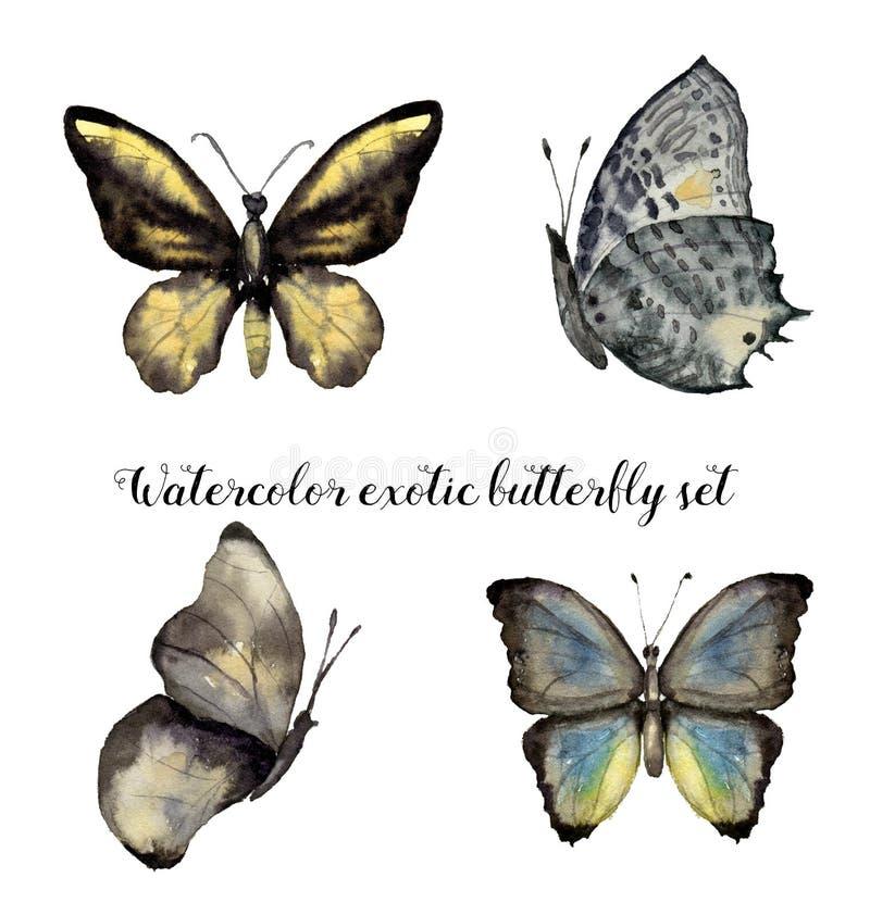 Exotisk fjärilsuppsättning för vattenfärg Räcka den målade krypsamlingen som isoleras på vit bakgrund design illustration space stock illustrationer