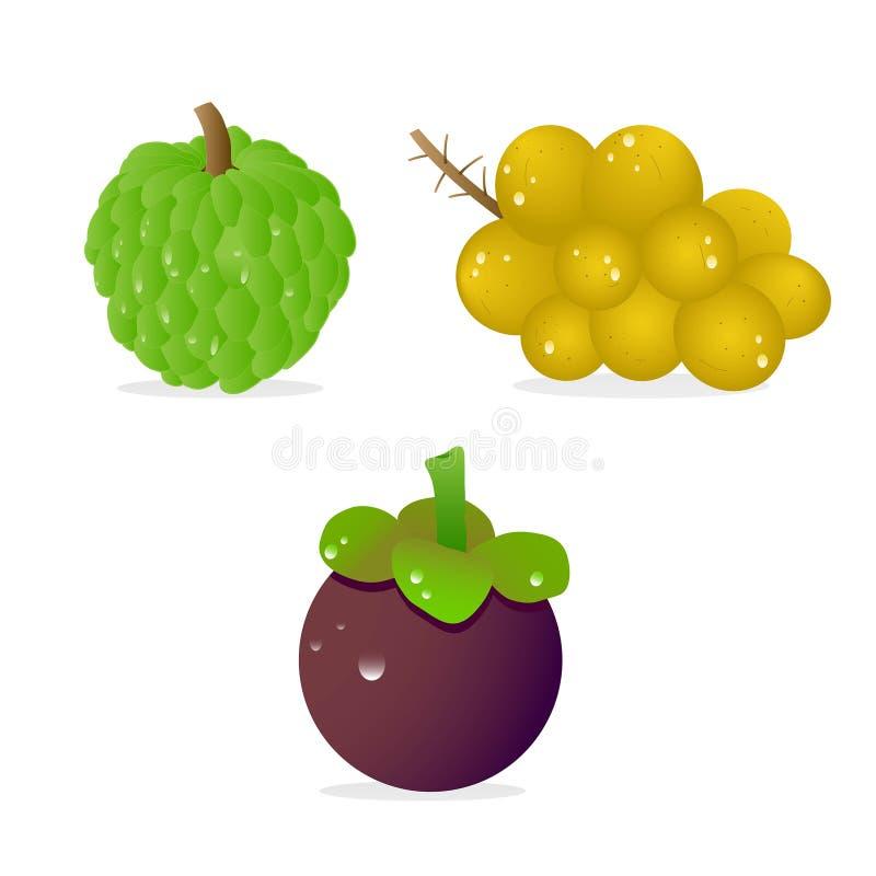 exotisk frukt arkivbilder