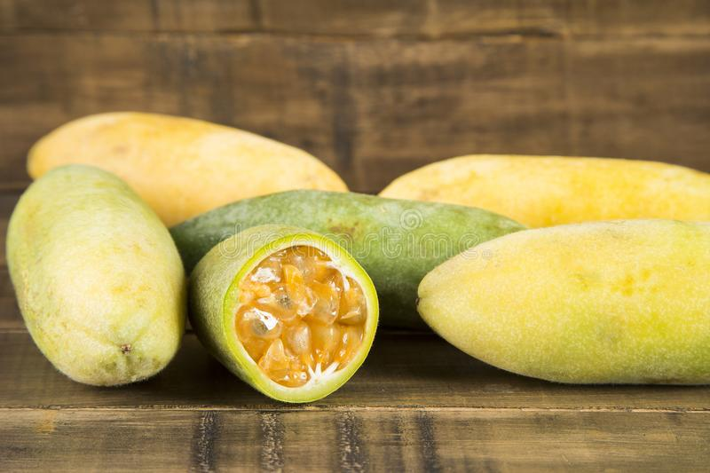 Exotisk frukt för Curuba - Passifloratripartita royaltyfria foton