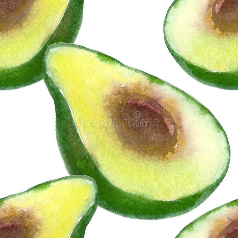 Exotisk frukt för sömlös modell av den tropiska avokadot Vattenfärg il stock illustrationer