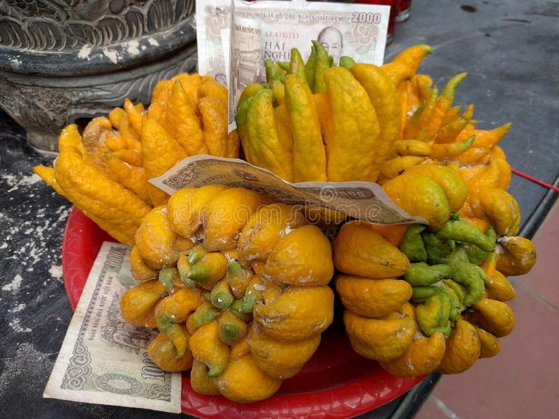 Exotisk frukt och pappers- pengar i Vietnam royaltyfria bilder