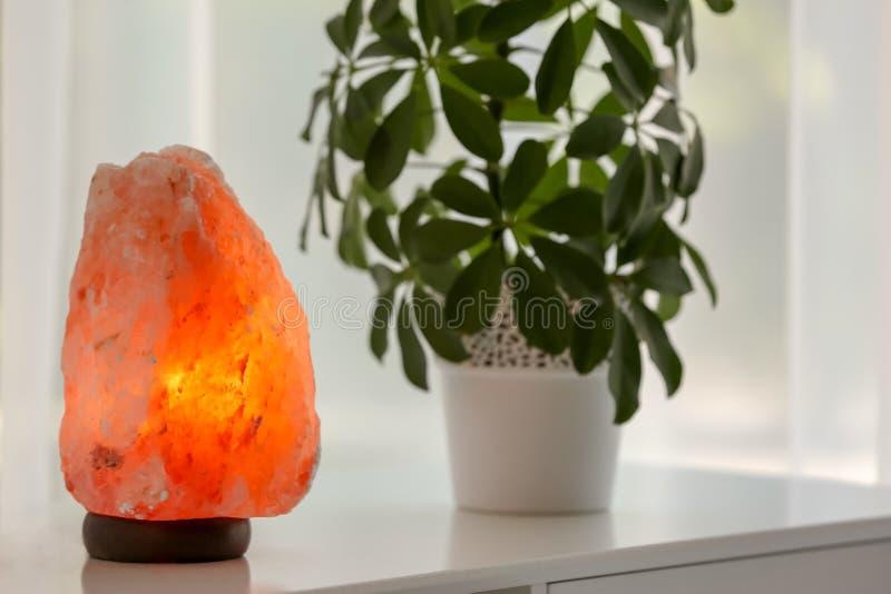 Exotisk Himalayan salt lampa royaltyfria foton