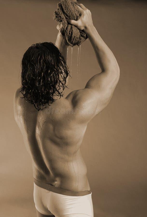 exotisk manlig fotografering för bildbyråer