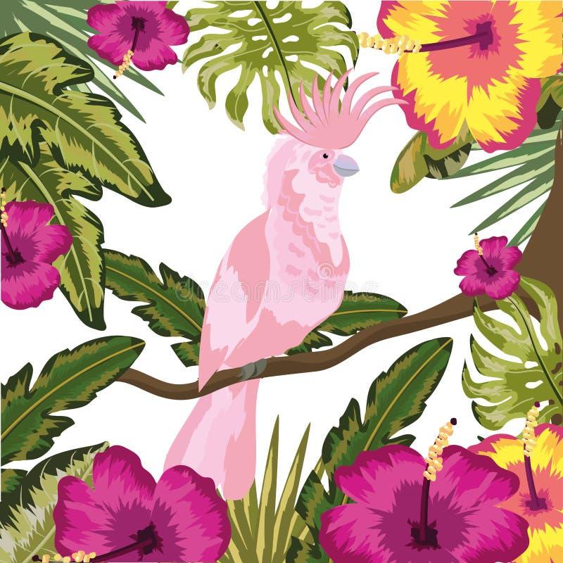 Exotisk och tropisk fågel för kakadua vektor illustrationer