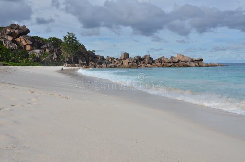 exotisk strand arkivbild