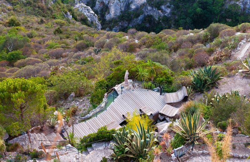 exotisk trädgård royaltyfria bilder