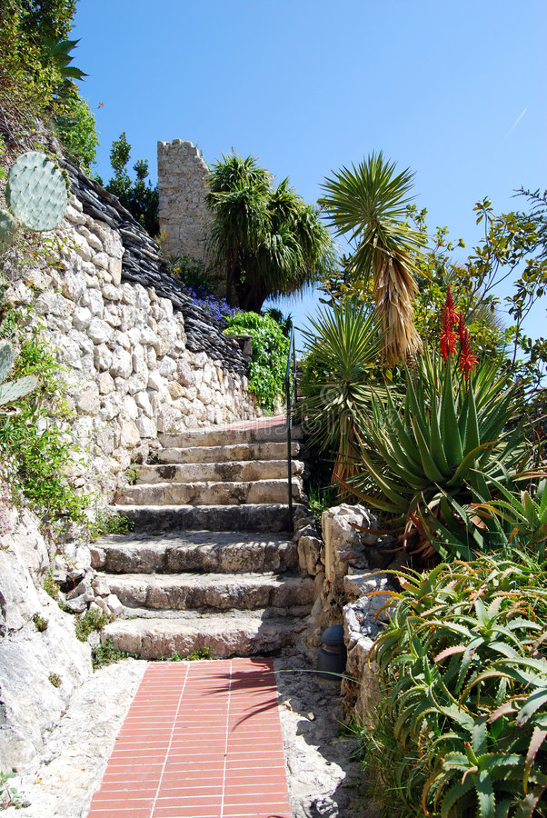 exotisk trädgård royaltyfri bild