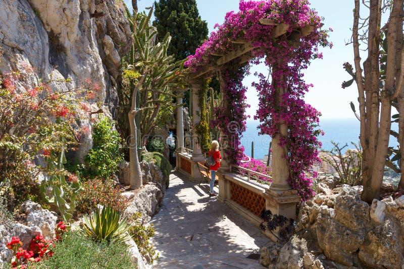 Exotisk trädgård av Monaco arkivbilder