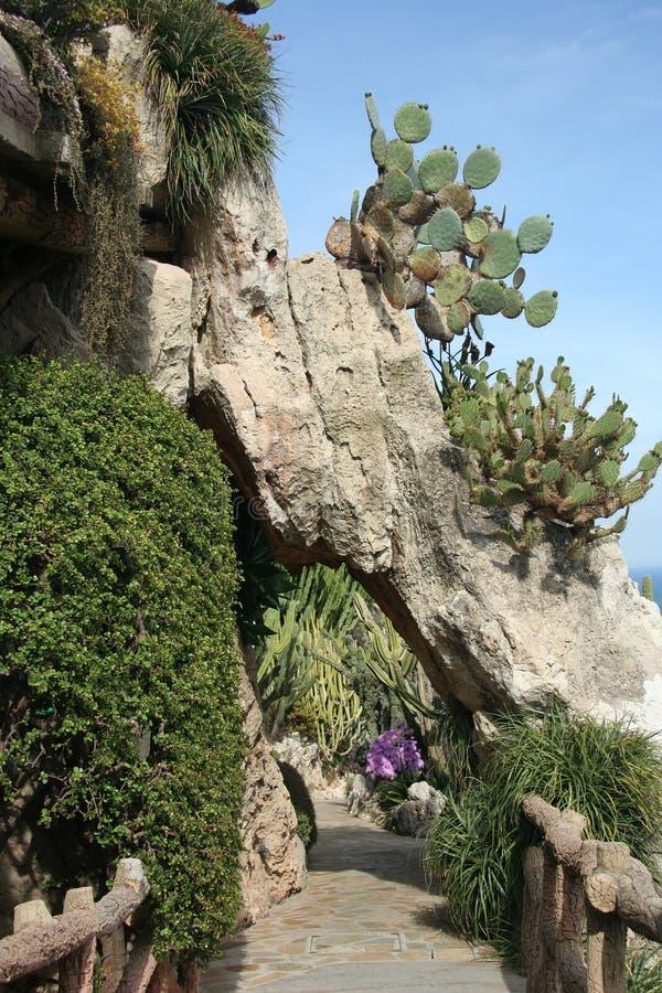 Exotisk trädgård i Monaco royaltyfria bilder
