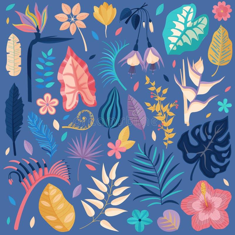 Exotisk tropisk blomma- och sidasamling stock illustrationer