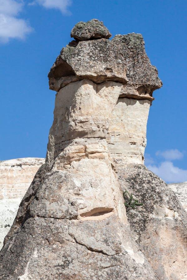 Exotiska Cappadocia fotografering för bildbyråer