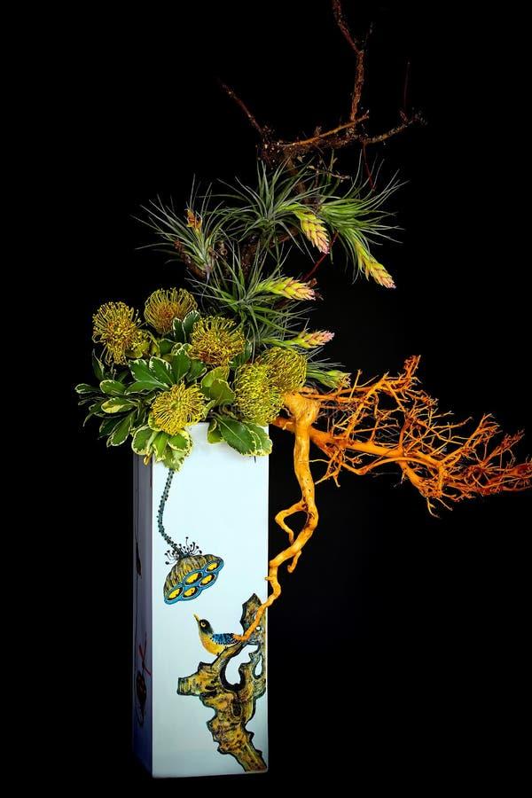 Exotiska proteablommor i högväxt vas för porslin royaltyfri bild