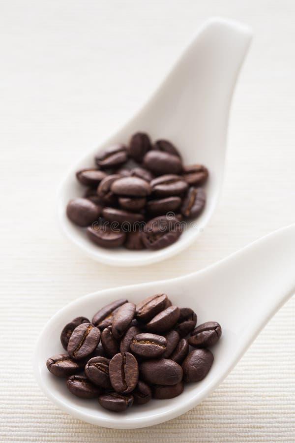 Exotiskt kaffe royaltyfri fotografi