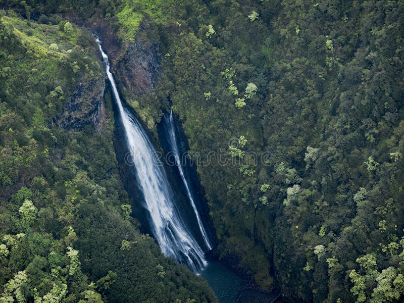 Exotiskt paradis för grön flykt, Kauai, Hawaii fotografering för bildbyråer