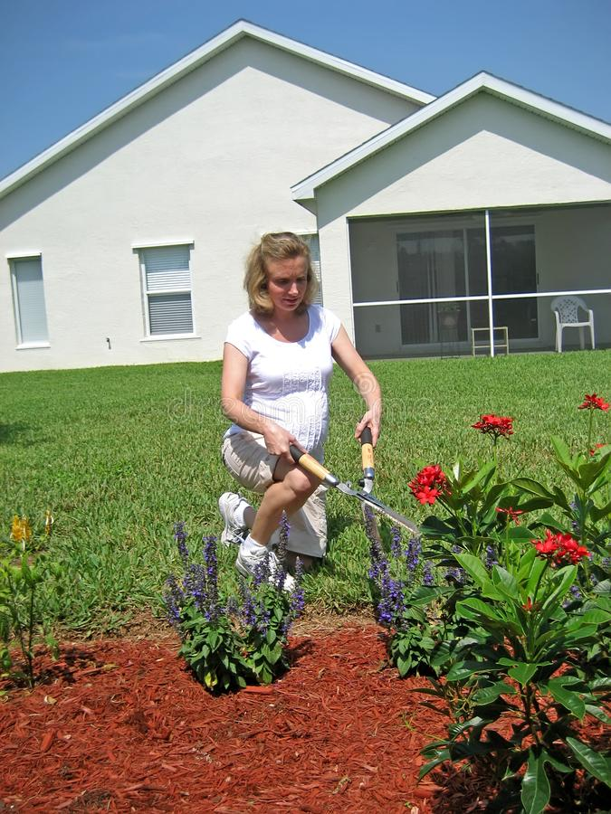 Download Expectant Mother Gardening 3 Stock Photo - Image: 2714962