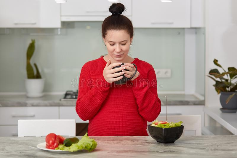 Expectant young mother has breakfast at kitchen, eats fresh vegetable salad and drinks tea, wears casual red sweater, has healthy. Eating, tastes aromatic royalty free stock photos